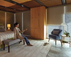 Silhouette® Window Shading with DuoLite® feature